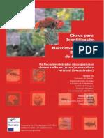 Chave para identificação de macroinvertebrados bentônicos de água doce