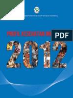 Profil Kesehatan_2012 (4 Sept 2013).pdf