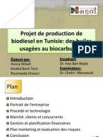 PPP 2013 - Projet de Production de Biodiesel en Tunisie