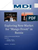 International Business Project - Mango Frooti