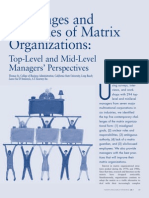 Challenges and Strategies of Matrix organization