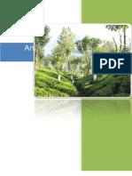 Analyzing Tea Import in Pakistan