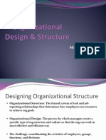 Org Design & Structure