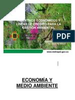 Incentivos Económicos en la Gestión Ambiental Empresarial