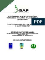 Caso Exitoso de Producción Más Límpia en la ciudad de Medellín