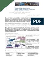 Neurobiología y neurociencia - aprendizaje