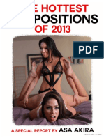 2013 Sex Positions