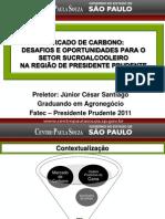 Mercado de Carbono - Palestra