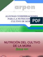 Nutricion Mora