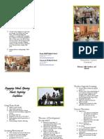 ed338 waldorf handout brochure