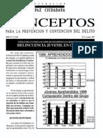 5 Delincuencia Juvenil en Chile