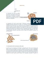 00000015 Agronomia Estructura Del Suelo