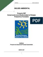 002000_Evaluacion Ambiental GEF
