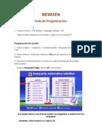 Guia de Programacion Newgen