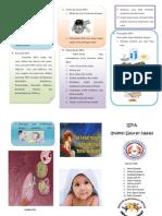 ispa Leaflet Ispa