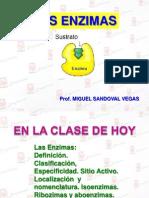 Clase Enzimas (1)