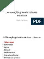 Inflamaţiile granulomatoase cutanate