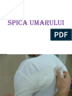 Spica Umar