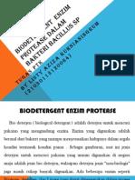 Biodetergent Enzim Protease