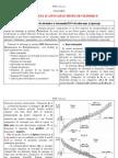 TCD - Curs 2 - Sistemul ISO
