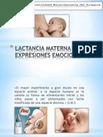 Lactancia Materna y Expresiones Emocionales (2)