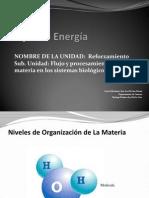 PPt 3 Ecosistemas Energia