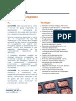 CONGELACION_CRIOGENICA