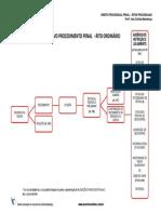 425 CERS Ritos Processuais Completo