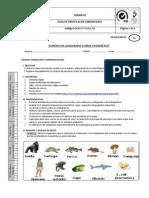 Praxis 5 Cladograma o Arbol Filogenetico