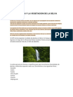 La Flora y La Vegetacion de La Selva