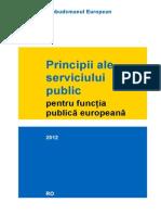 principii ale serviciului public pentru functia publică euro