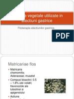 Produse Vegetale Utilizate in Afectiuni Gastrice