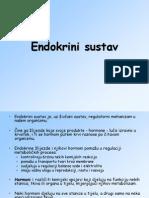 Endokrini sustav ppt