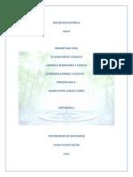 Trabajo Agua Quimica - Copia (1)