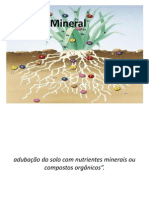 Aula Nutrição Mineral - Cópia
