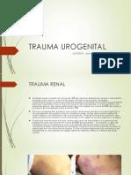 Trauma Urogenital