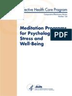 Meditation Report 140106