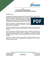 Informe PTAR LFV Final 14.11