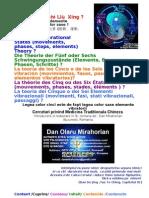 Acupunctura Legea cinci miscari-Elementul ascuns/The Hidden Element/ El elemento oculto/ L'elemento nascosto/ Die verborgene Element/ L'élément caché
