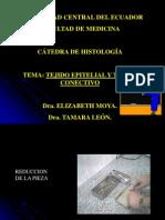 Epitelios Glandulas Coloraciones1 110915132912 Phpapp01