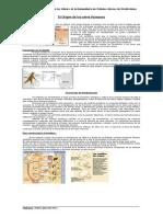 prehistoria-paleolitico