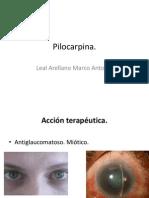 Pilocarpin A