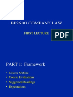 Lecture 1 company law