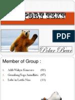 Polar Bear (Report Text)