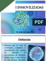 07_enzimas_inmovilizadas
