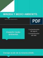 Mineria y Medio Ambienyte