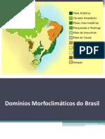 dominios morfoclimaticos