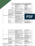 PHYLLUM_bacterianos[1]
