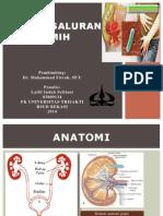 Ppt Indah (Urologi Isk)