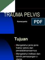 Trauma Pelvis Ppt